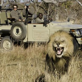 Discover Zambia Tour