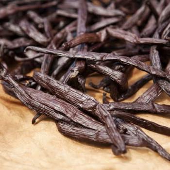 Dried vanilla