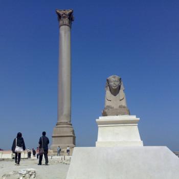 Day tour in Alexandria