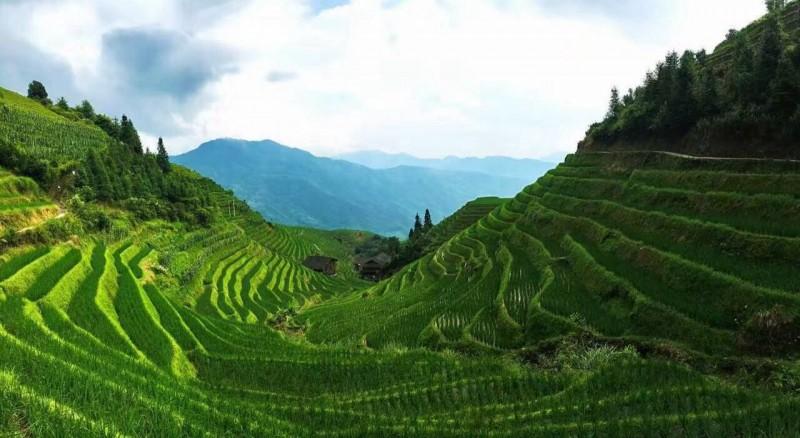 Best China Tours Longsheng Minority Rice Terrace